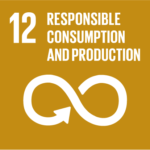 SDG responsible consumption and production